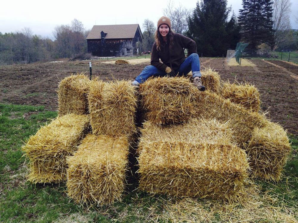 Hay there!